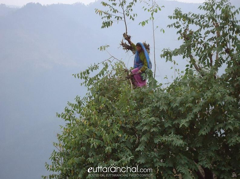Uttarakhand rural womens daily life