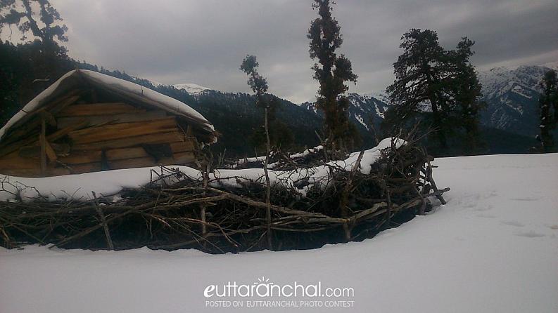 Chaan in Winter
