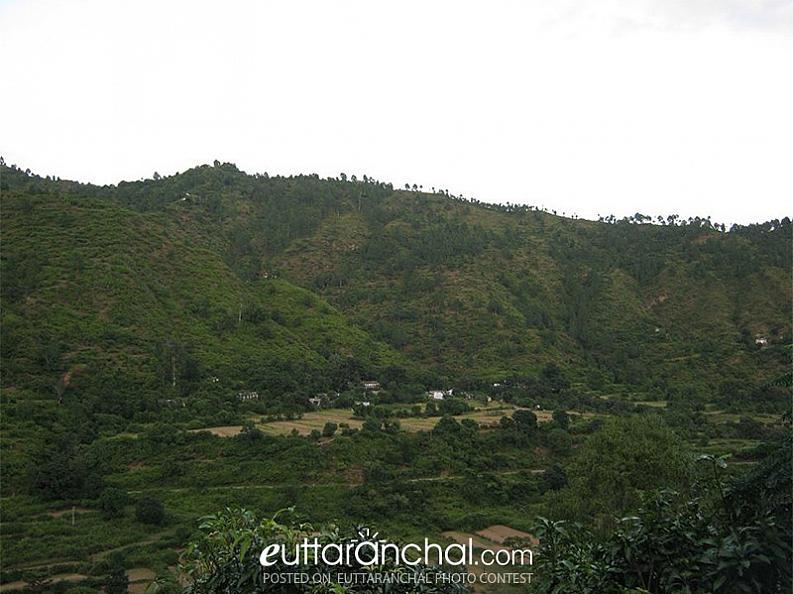 Village on Hilltop
