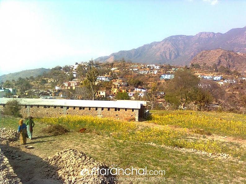 Nelda Dharmandal, Tehri Garhwal