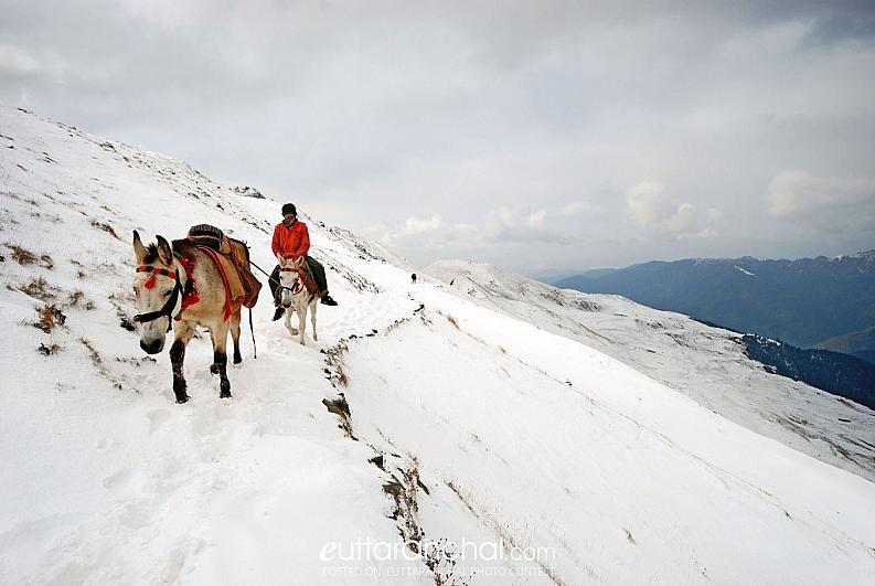 Way to Roopkund