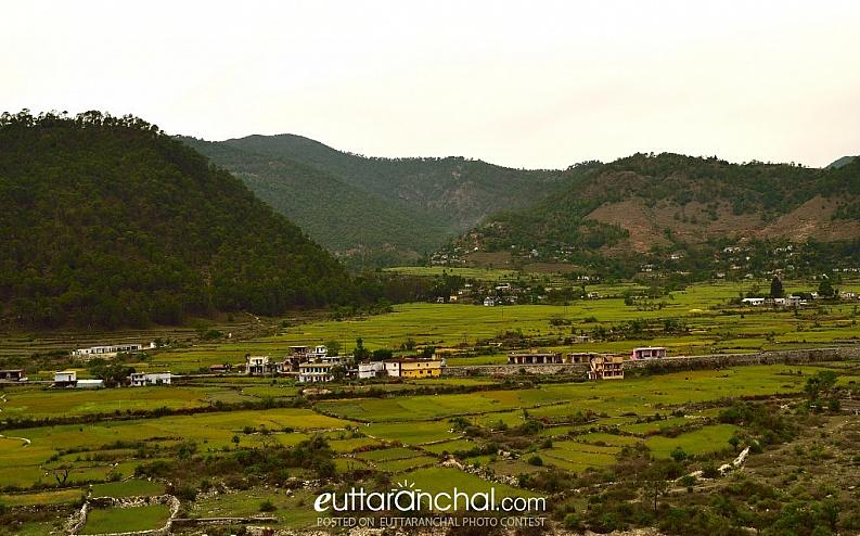 A picturesque village between someshwar and ranikhet