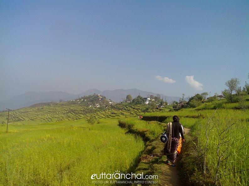 DHONI SILINGA Village
