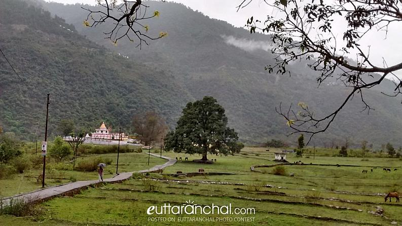 Bhuvaneswari Devi Temple