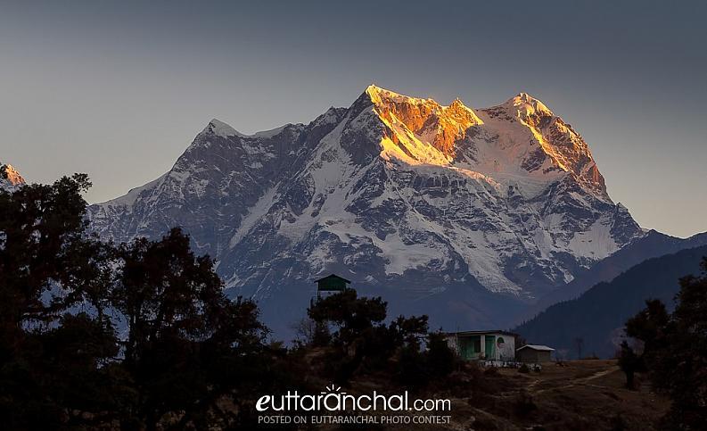 Life in Himalaya