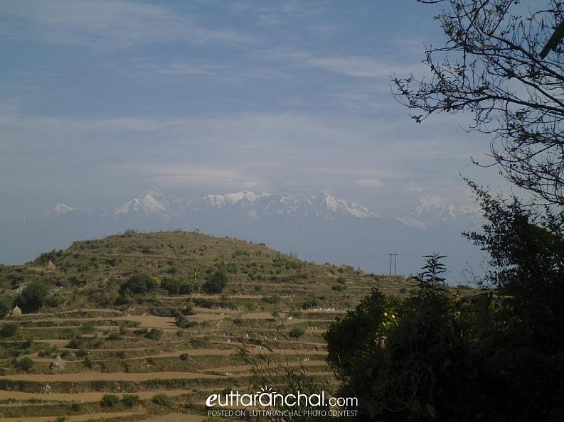 View of Himalaya with fields in the lap of Nature