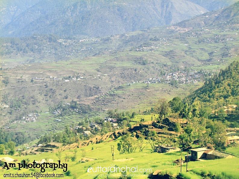 Basar patti Tehri Gadwal – 35 kms from Ghansali