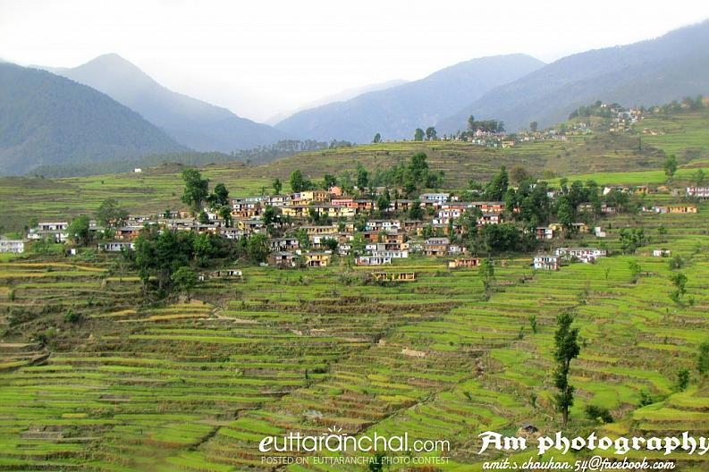 Village kandarsigh basar patti