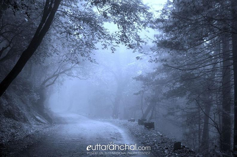Misty-rious