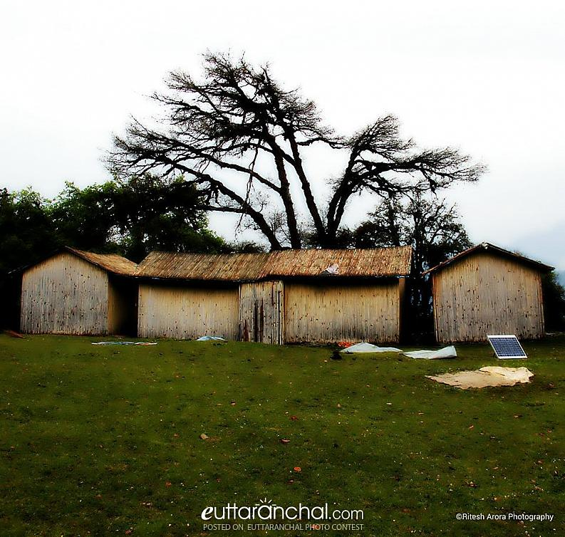 Huts on the Roadside