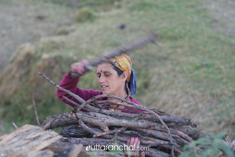 Lovely Kamla ji