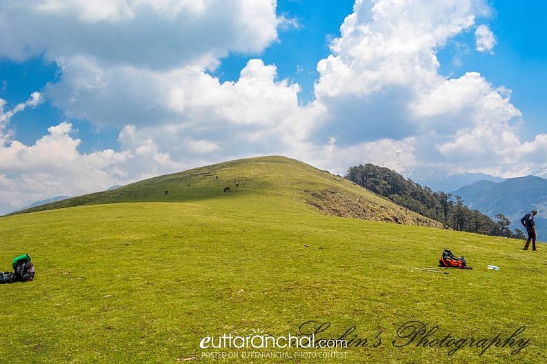 Ali Bugyal (Grassland)