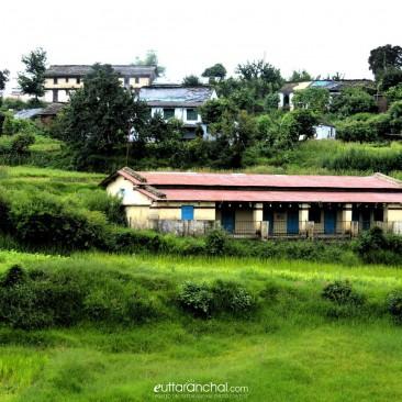 Scenic beauty of Majkhali