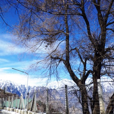 A View of Auli