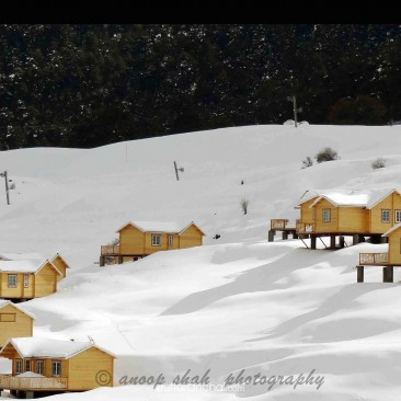 Cottage at Auli