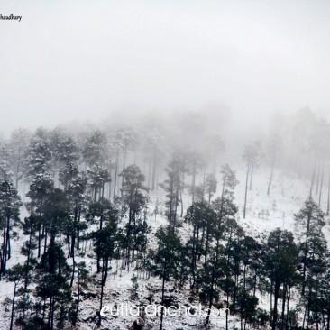 Haze After Snowfall