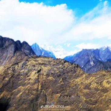Mountain Elephent