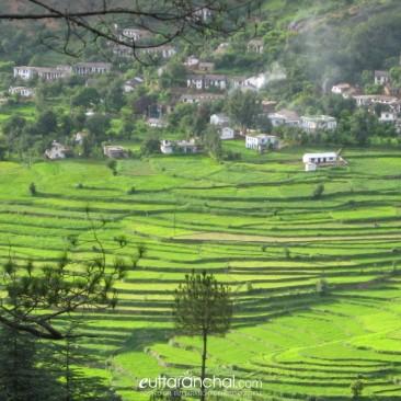 Pyaara Gaon