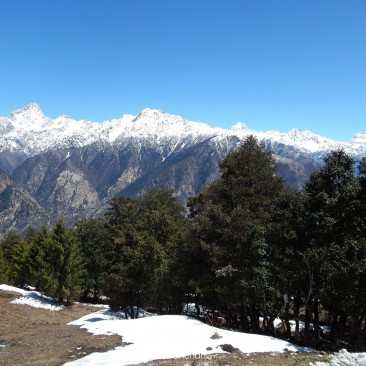 Spring in Auli