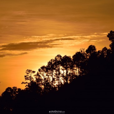 A golden sunrise at kausani
