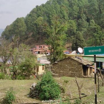 dadamandi market view