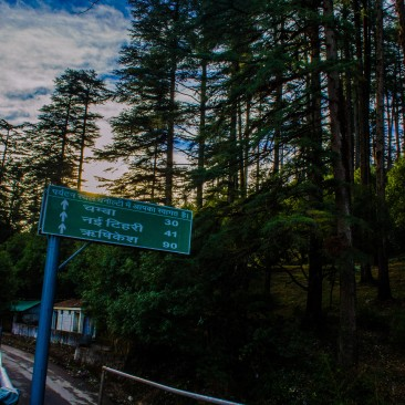 A Dhanaulti Morning