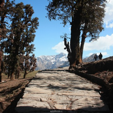 Tranquility at Chopta