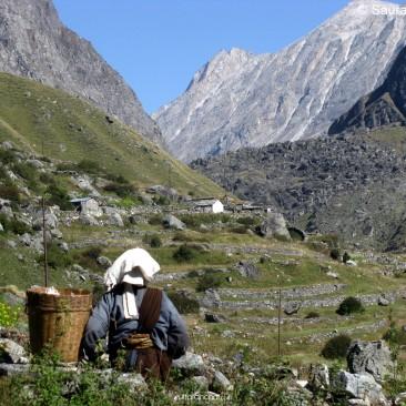 Livelihood in Himalaya