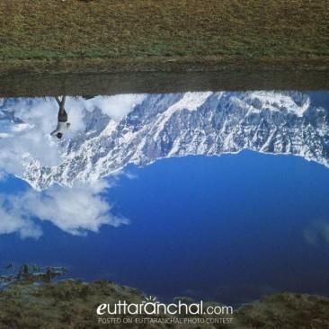 Translucent reflection