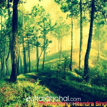 nature calling..