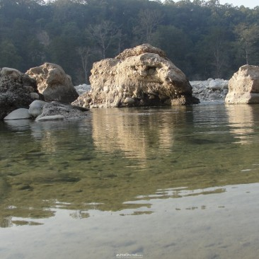Allian in Corbett : Water Giant