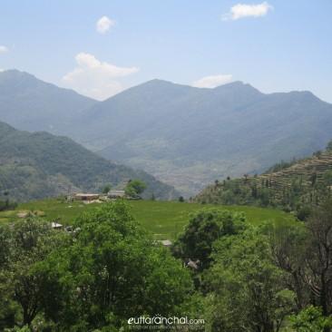 The charming village, Saari